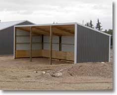 Loafing single slope shed kits hansen pole buildings for How to build a sloped roof shed