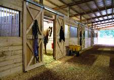 Horse Stalls: What Size?