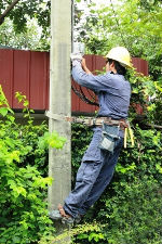 How Long Will Utility Poles Last?