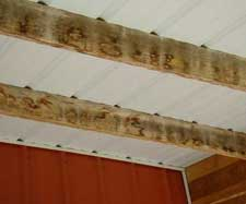 Wet-Roof-Purlins