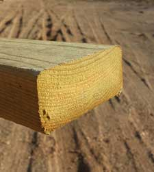 Cut Ends of Pressure Treated Lumber