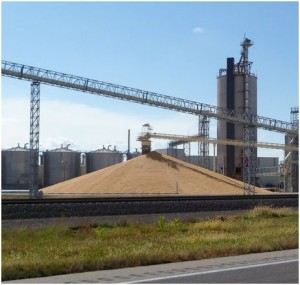 Pole  Building Grain Storage