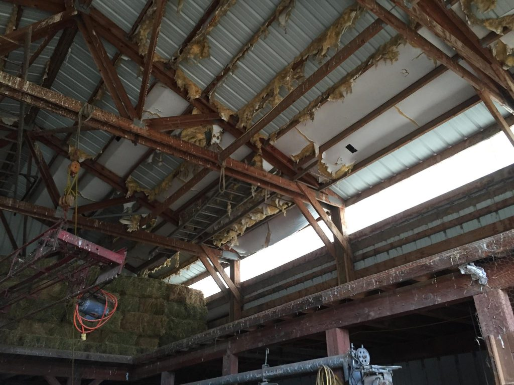 Insulation archives hansen buildings spot problems with this pole barn photo solutioingenieria Images