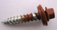 Lobular: Powder Coated Screws