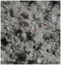 green fiber insulation