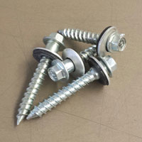 Galvanized Steel Screws