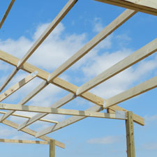 Size & Species of Purlins