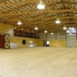 Choosing a Horse Riding Arena Structural System