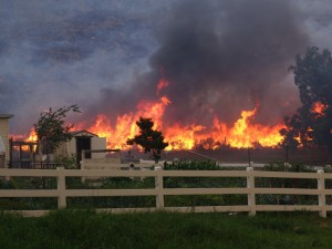 Protection from Wildfires Part I