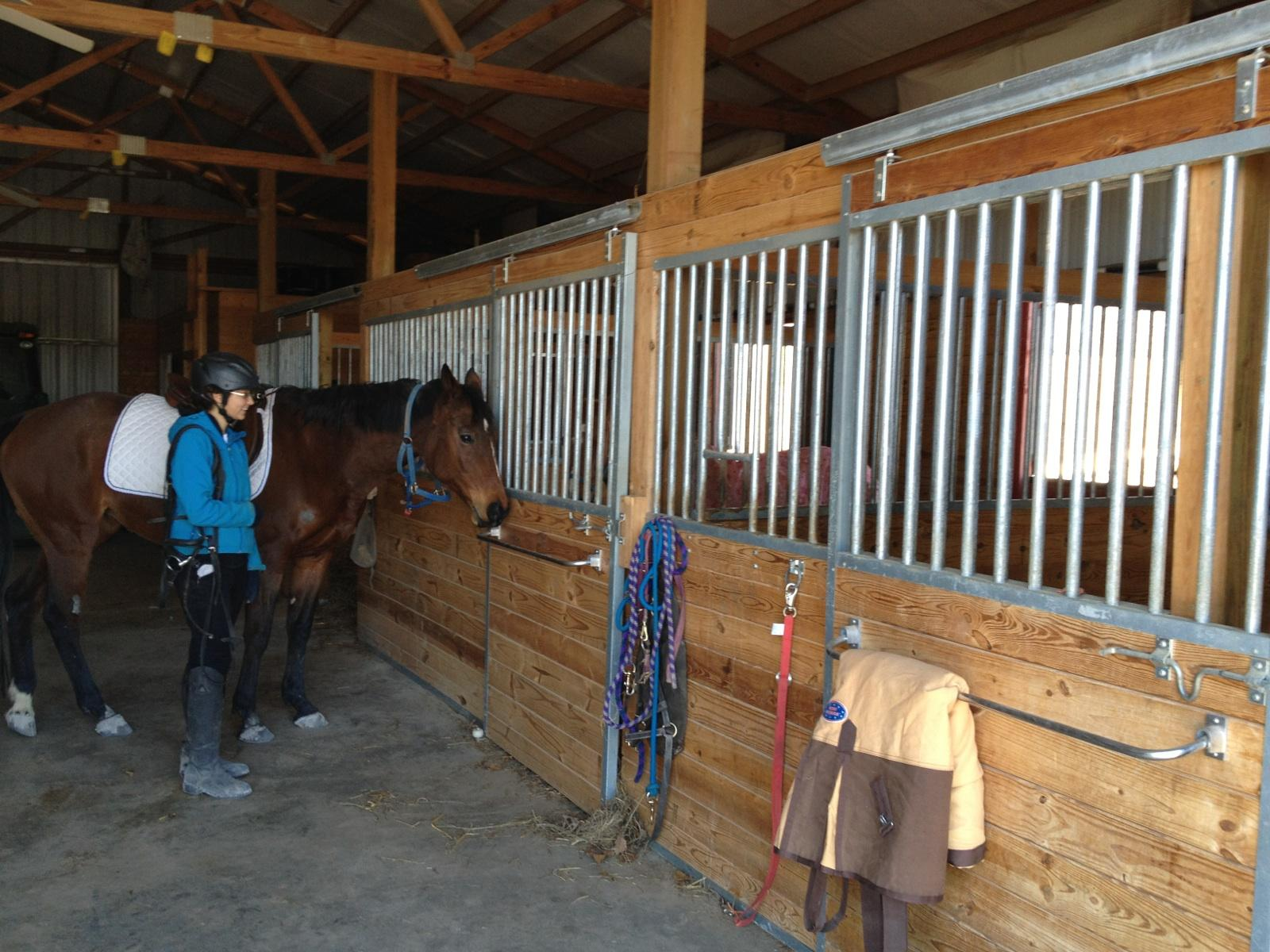 Nine Considerations for Your Post Frame Horse Stall Barn