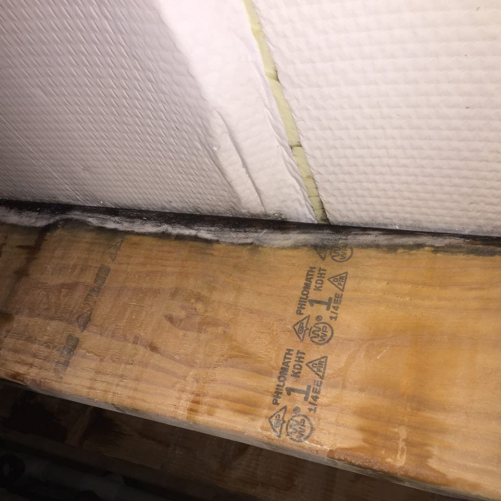Mold in a Post Frame Building Attic