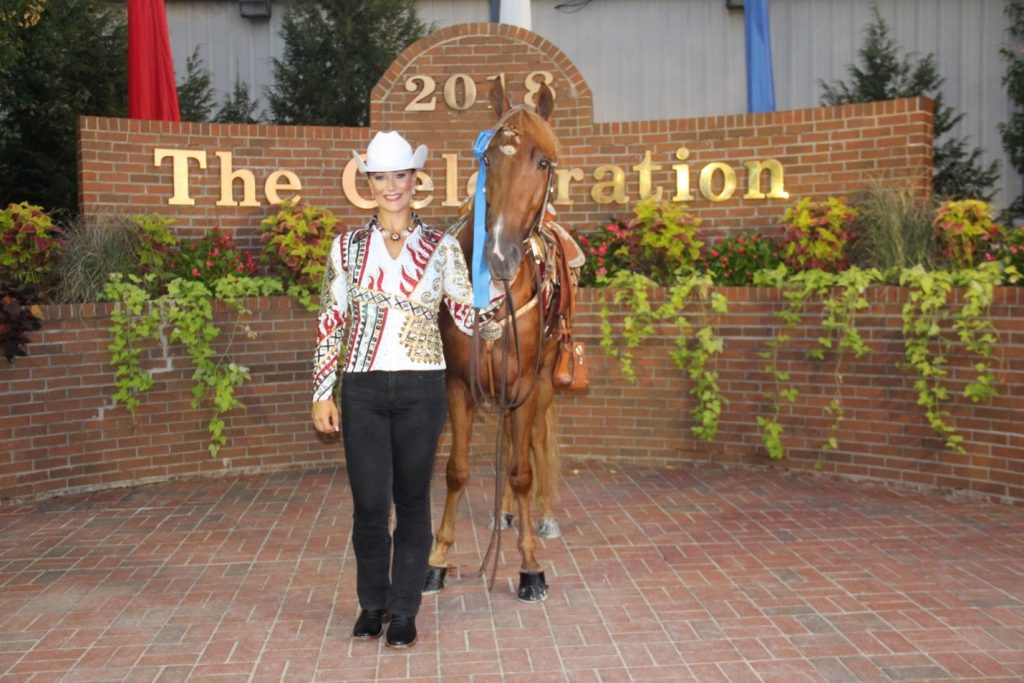 Planning Your Equestrian Riding Arena